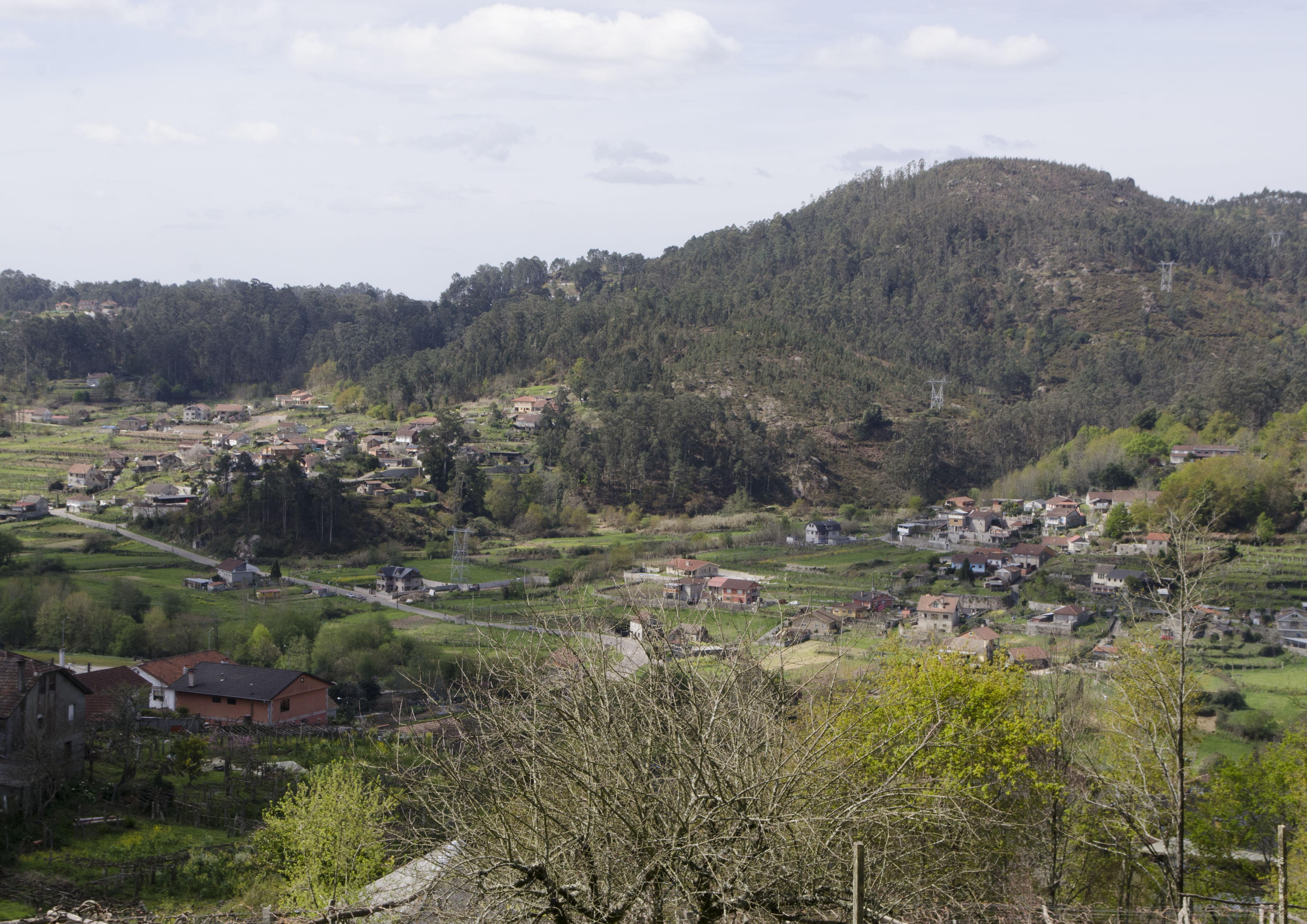 Picoña