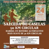 Andaina de Salceda - Cartel 14