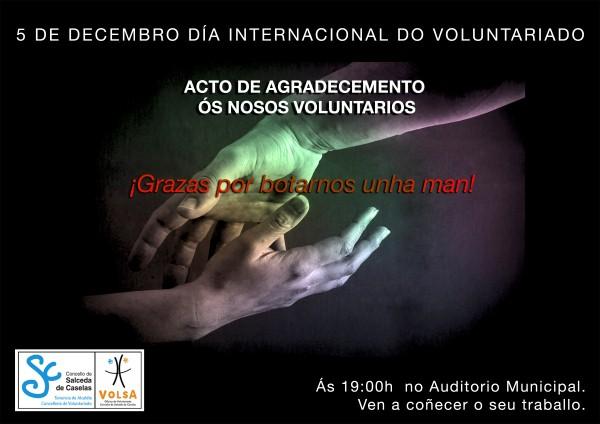 Diavoluntariado2013