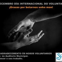 cartel1voluntariado