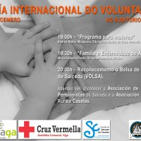 Voluntariado 2014 a3