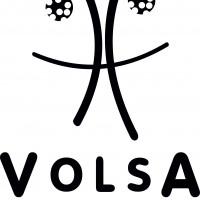 Volsa-Logo 14