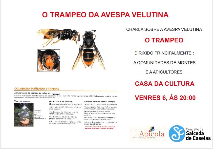 TRAMPEO CHARLA