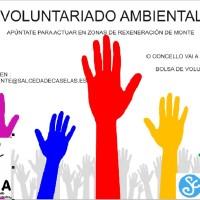 cartel voluntariado lumes