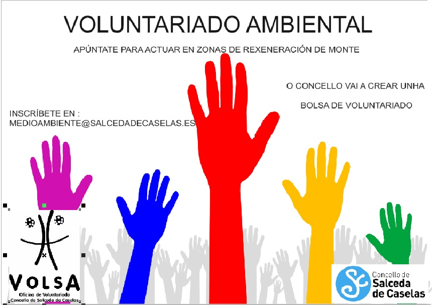 cartel voluntariado lumes