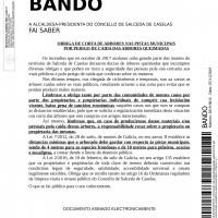 BANDO ARBORADO copia