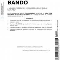 BANDO-PLENO-copia