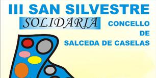 III SAN SILVESTRE 2013-1